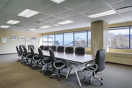 VuPoint Research San Francisco - Sage Room