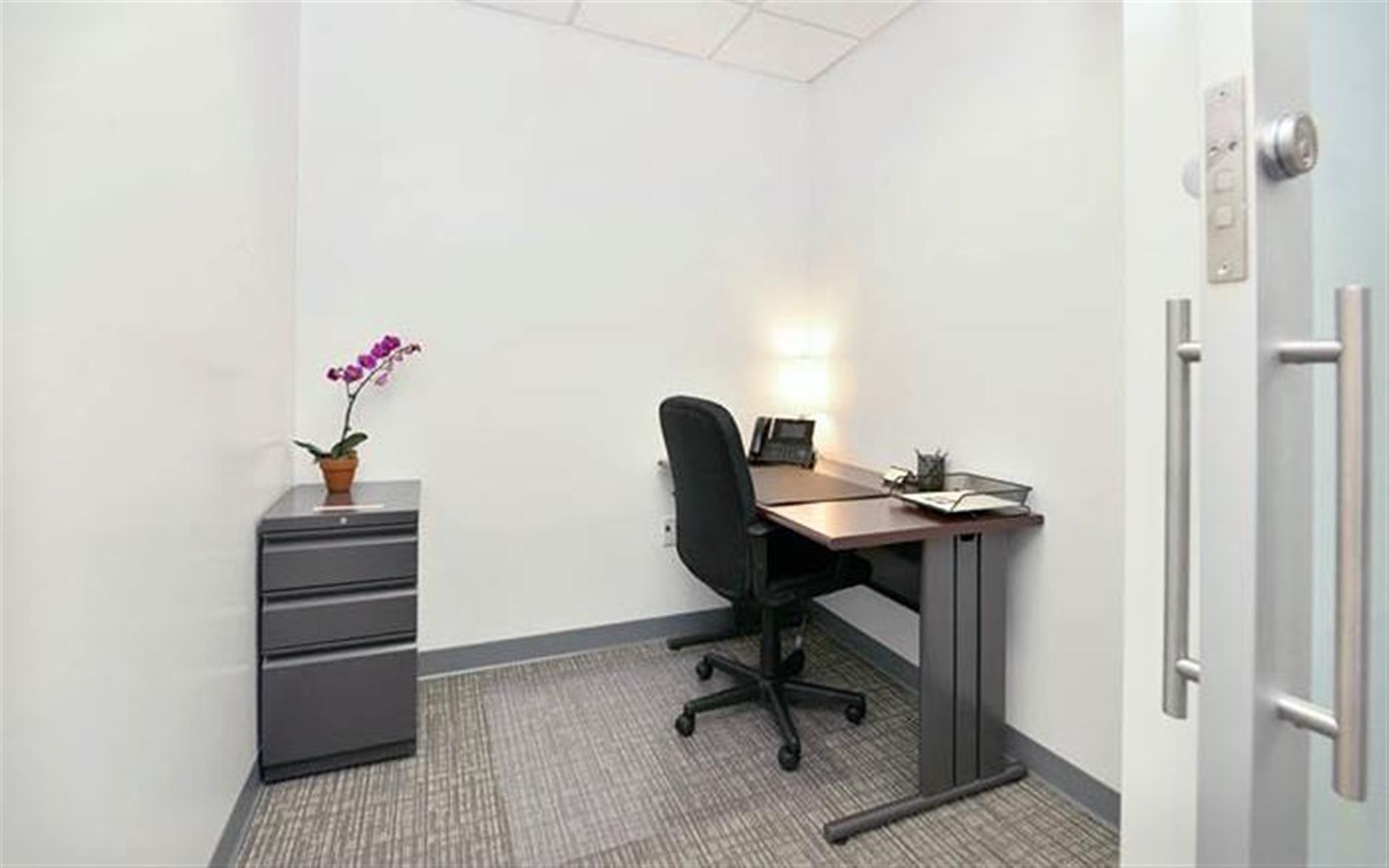 NYC Office Suites 733 - Small Private Office