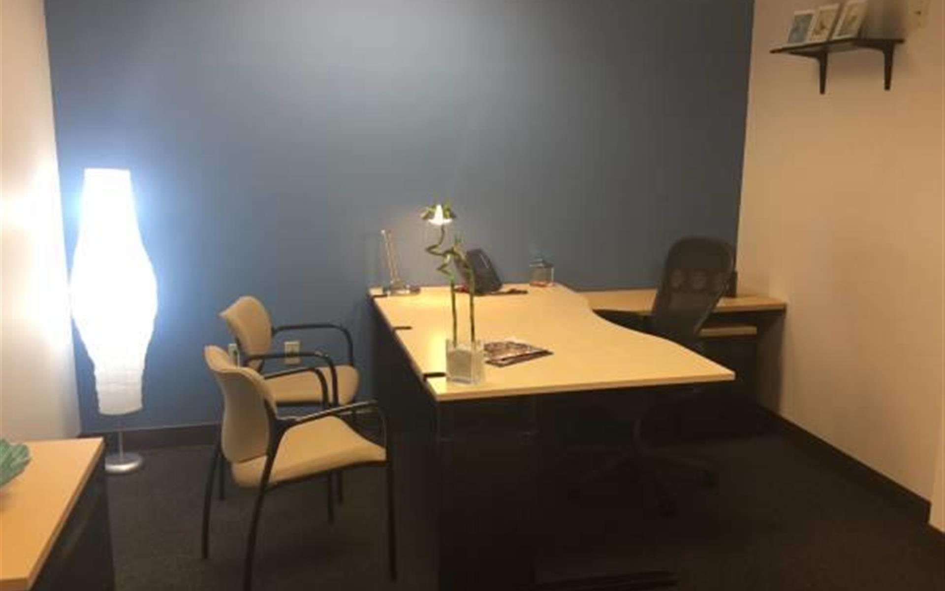 ASG Office Center - Deluxe Office Space Available - Move in Ready!