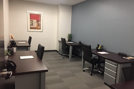 Virgo Business Centers Midtown East - Midtown East Private Office for 4