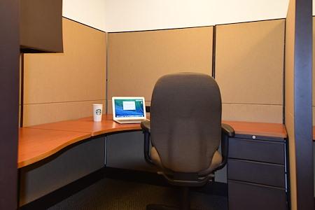 R.K. Black Office - Open Desk 1