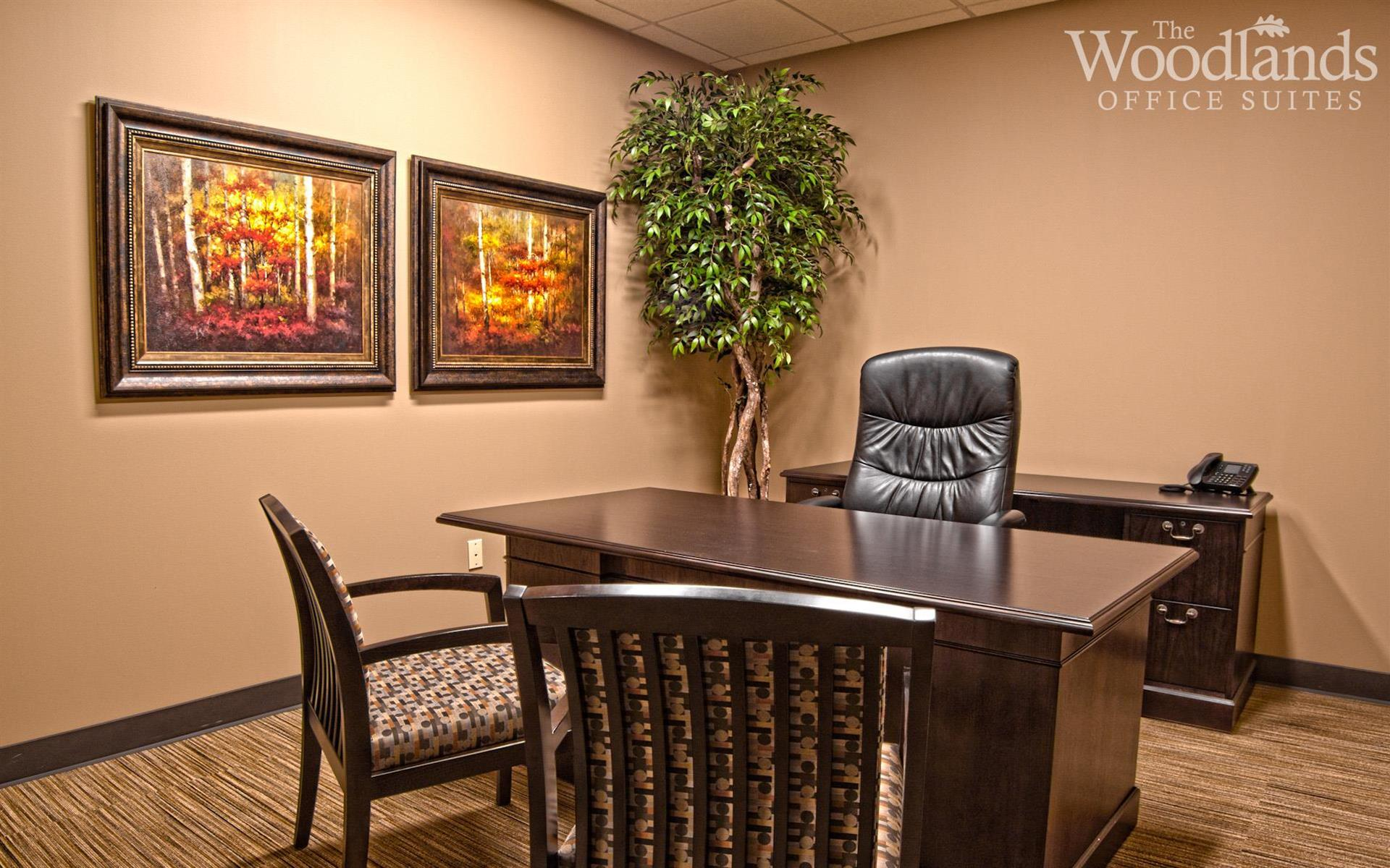 The Woodlands Office Suites - Suite #238 - Medium Interior Office