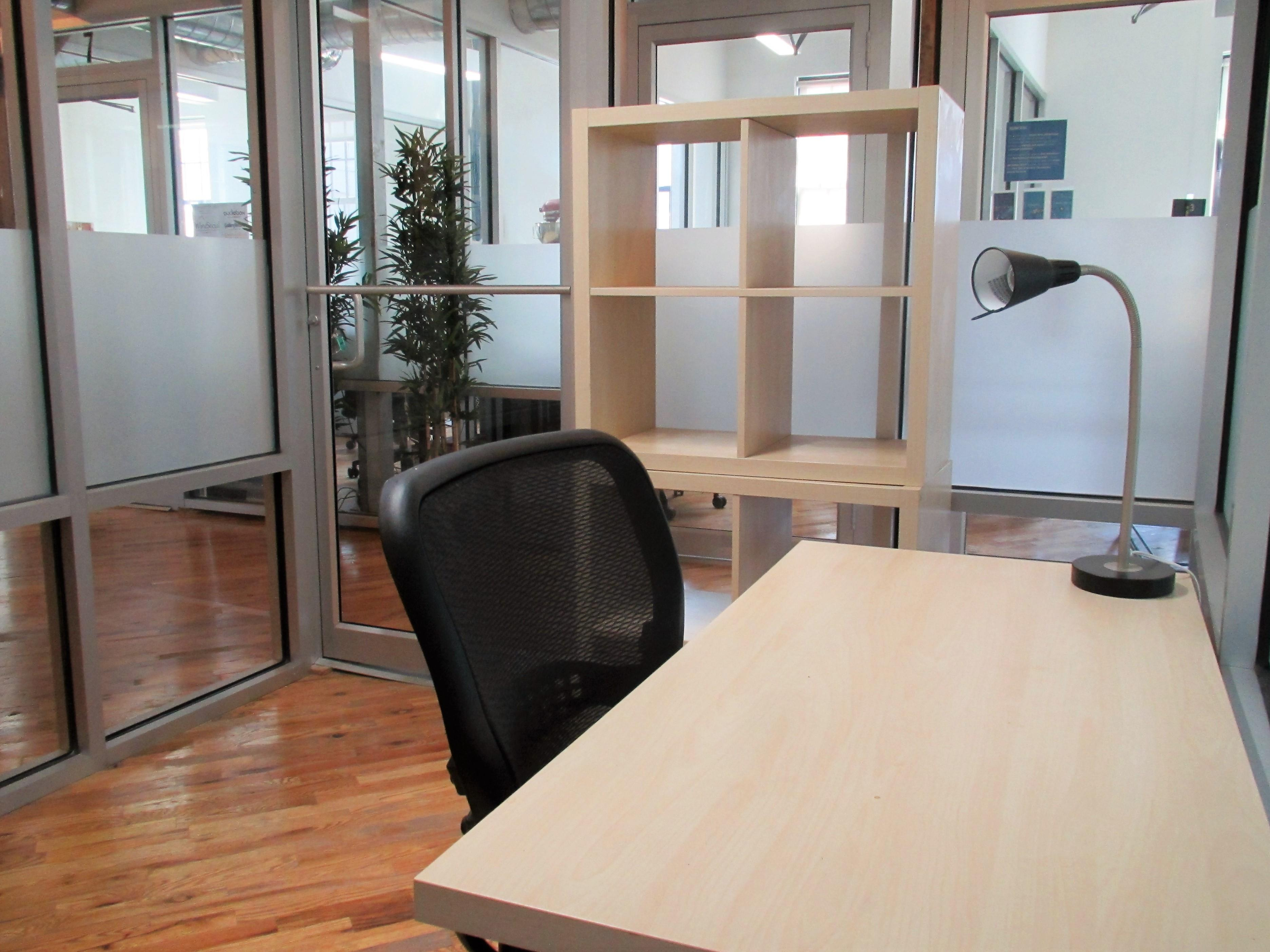Green Desk - 195 Plymouth Street - Spacious Private Office in DUMBO! (Copy)