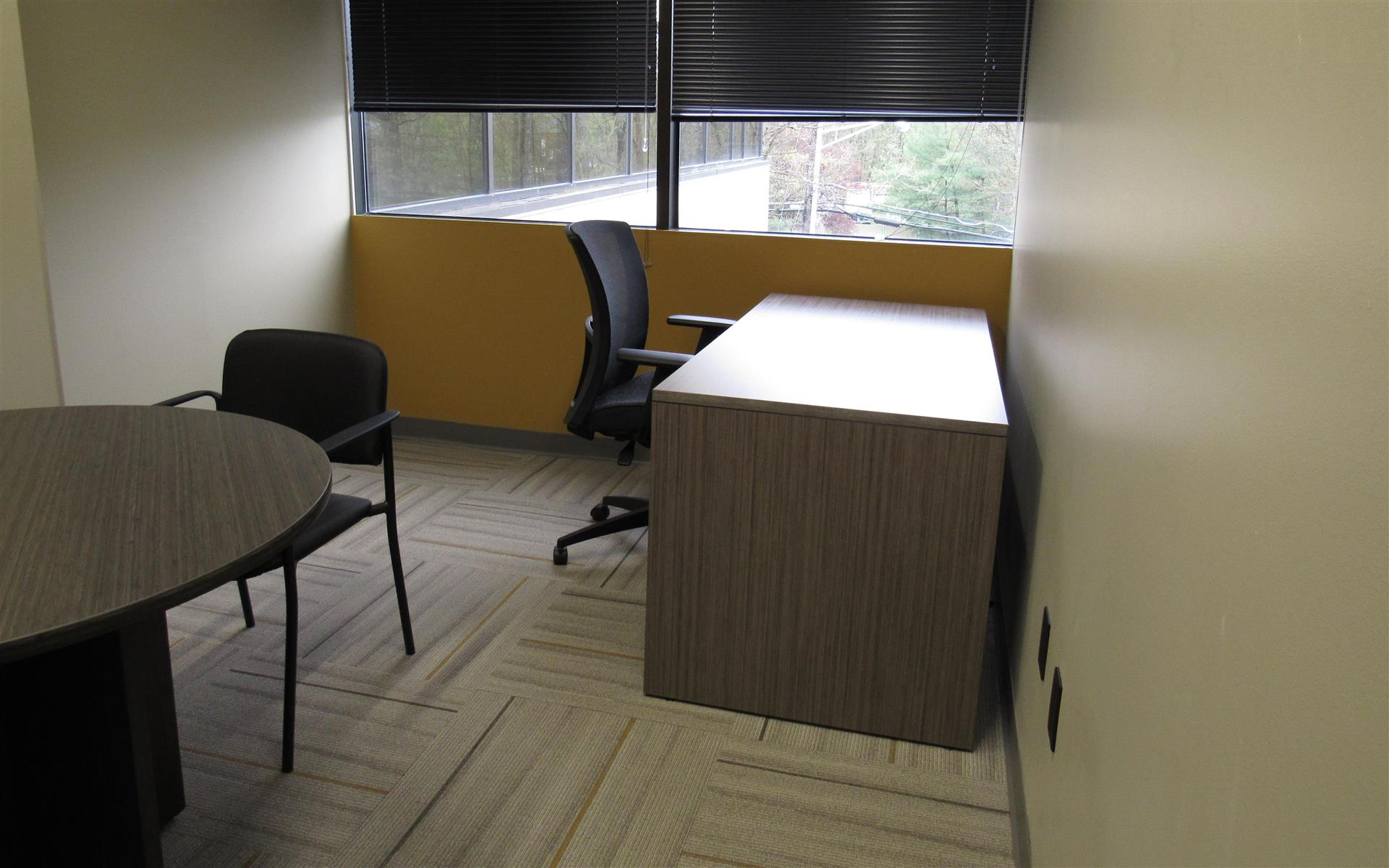 Liberty Office Suites - Parsippany - Office 15