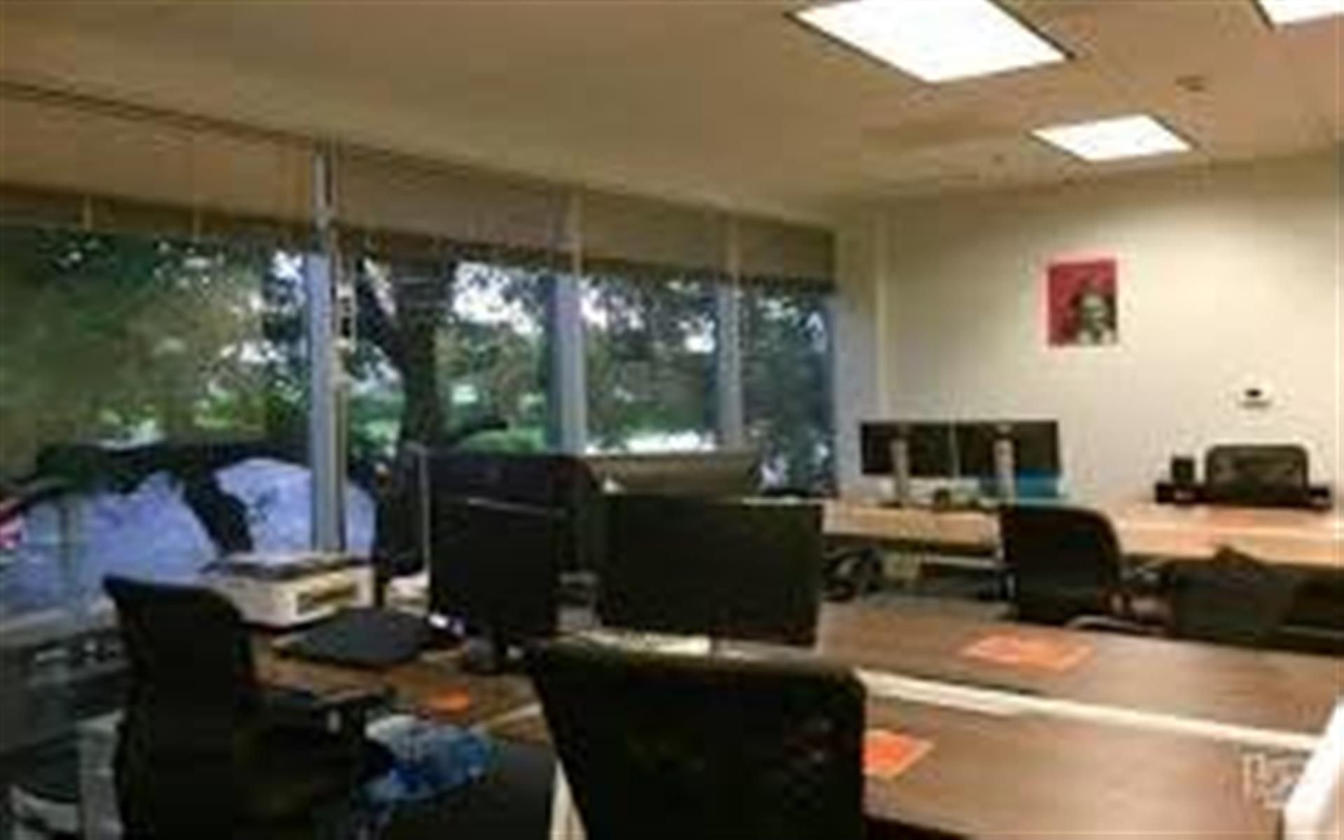 Duo Works - Full-Time Desk - Oversized Window Views