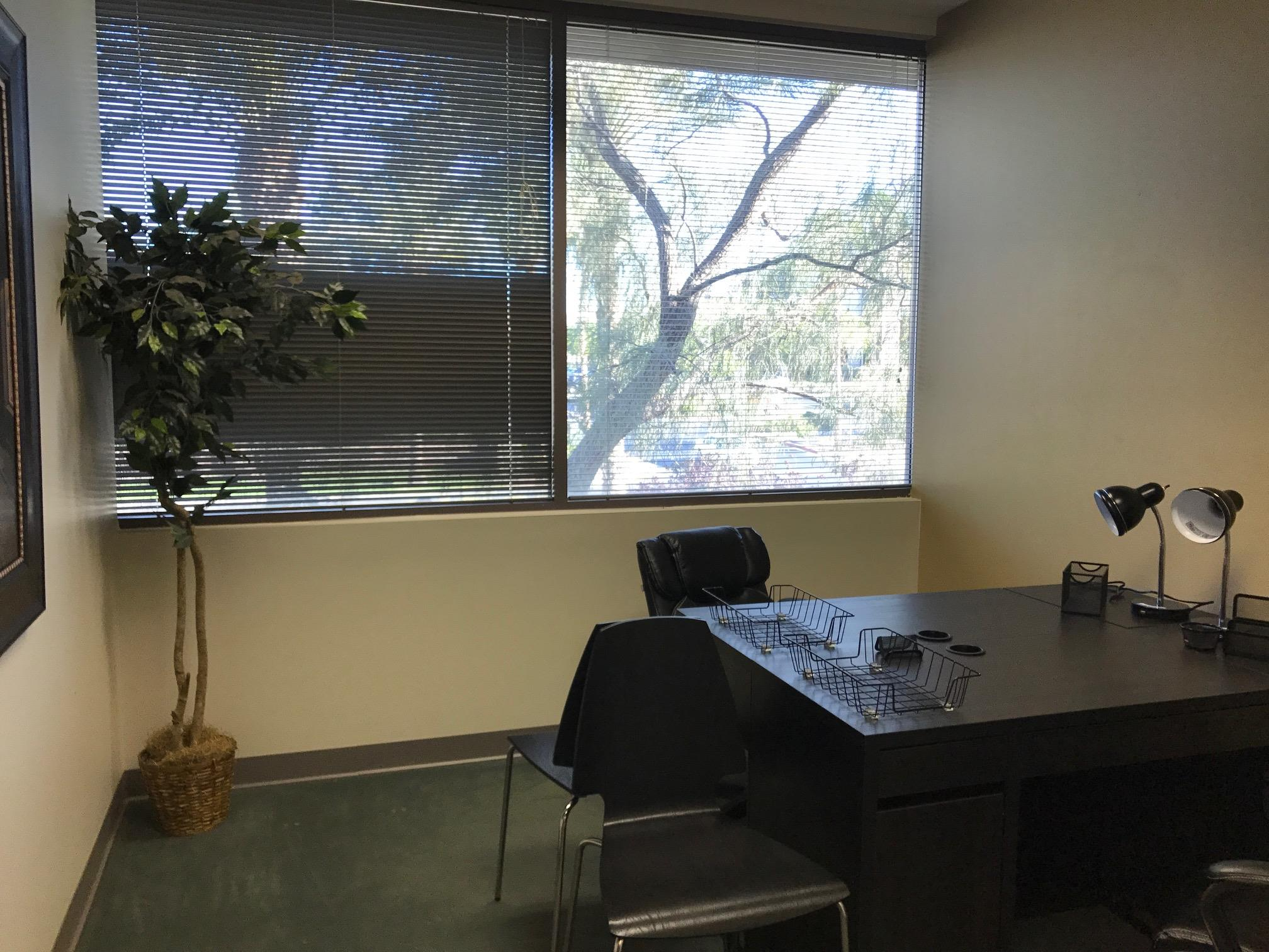 Blue Sun Office Suites - Dedicated Desk 1