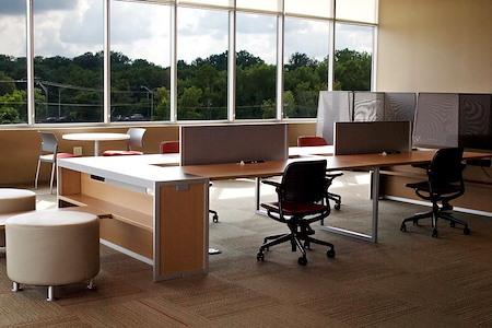 ESPACES Belle Meade - Open Desk 1