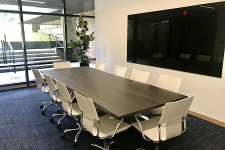 HAYVN Coworking - Long Neck Conference Room (for 12)