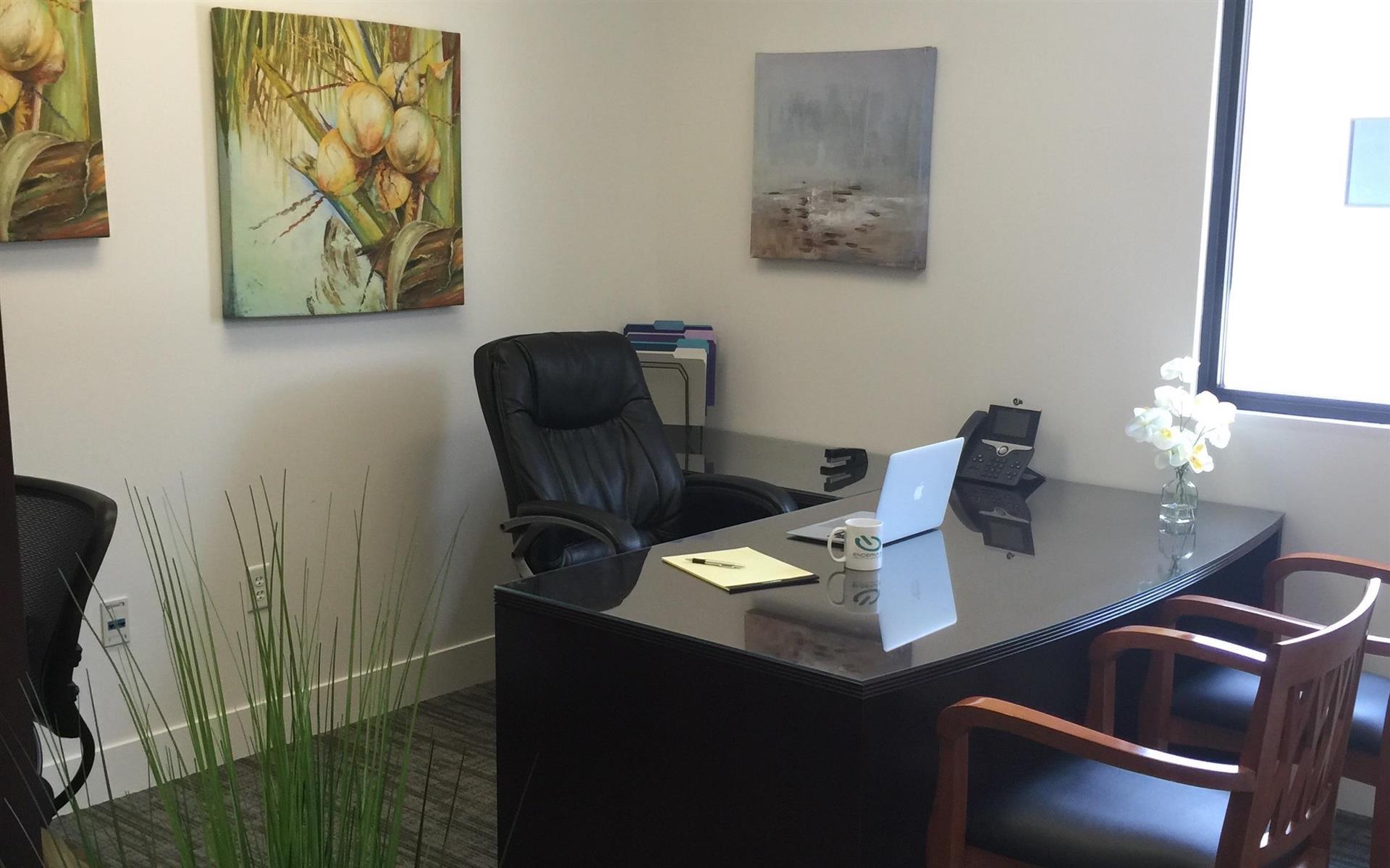 Endeavor Innovative Workspaces - Private Office 1