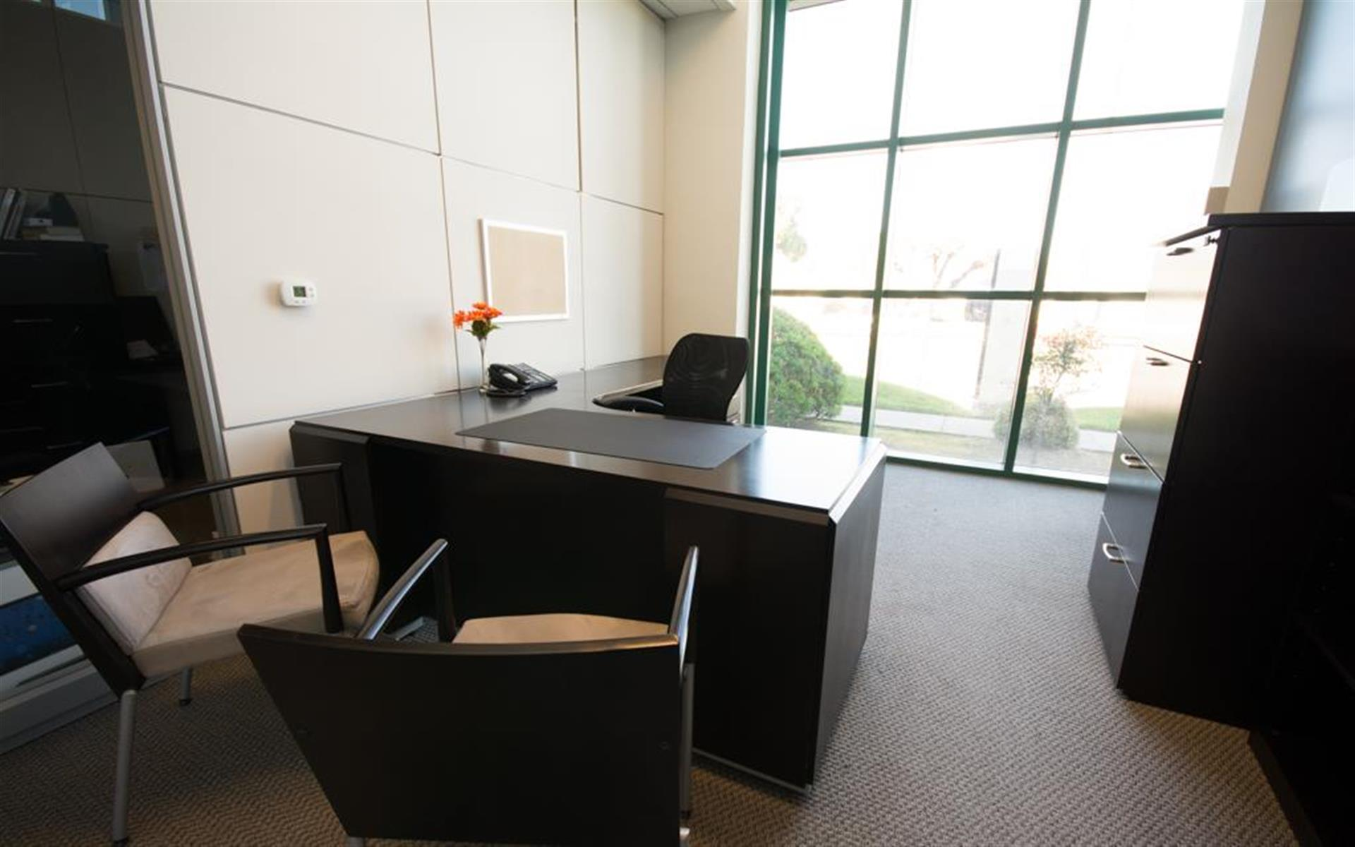Silicon Valley Business Center - Monthly Private Office-Single