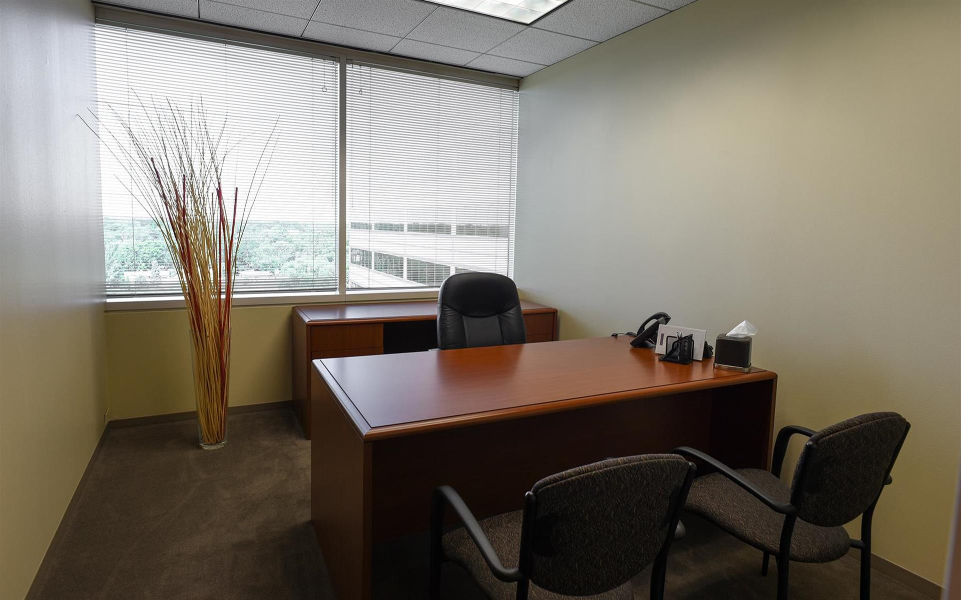 My Office Suite - Oakbrook - Day Office 808