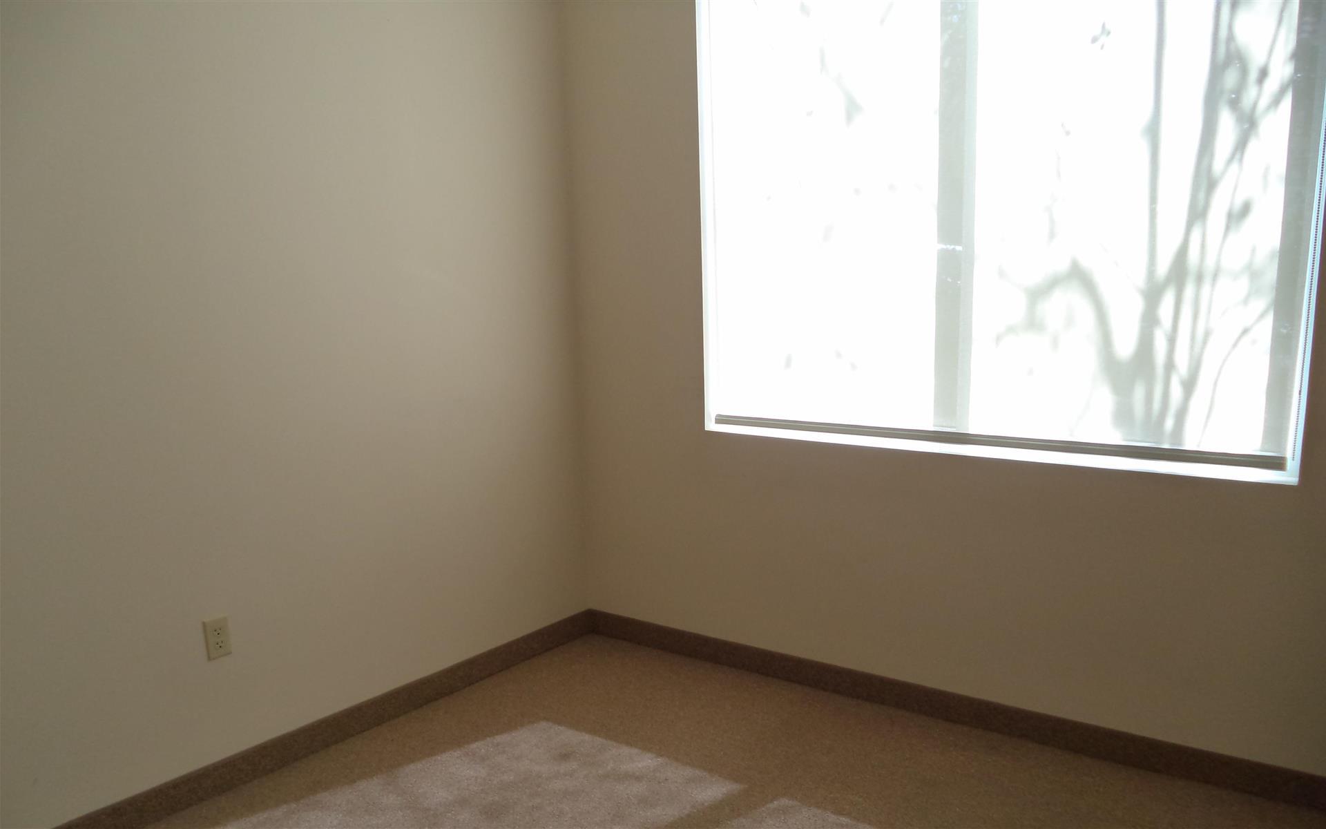 Eiglarsh Executive Offices-Weston, FL - Office Suite-South Exterior 1st Floor