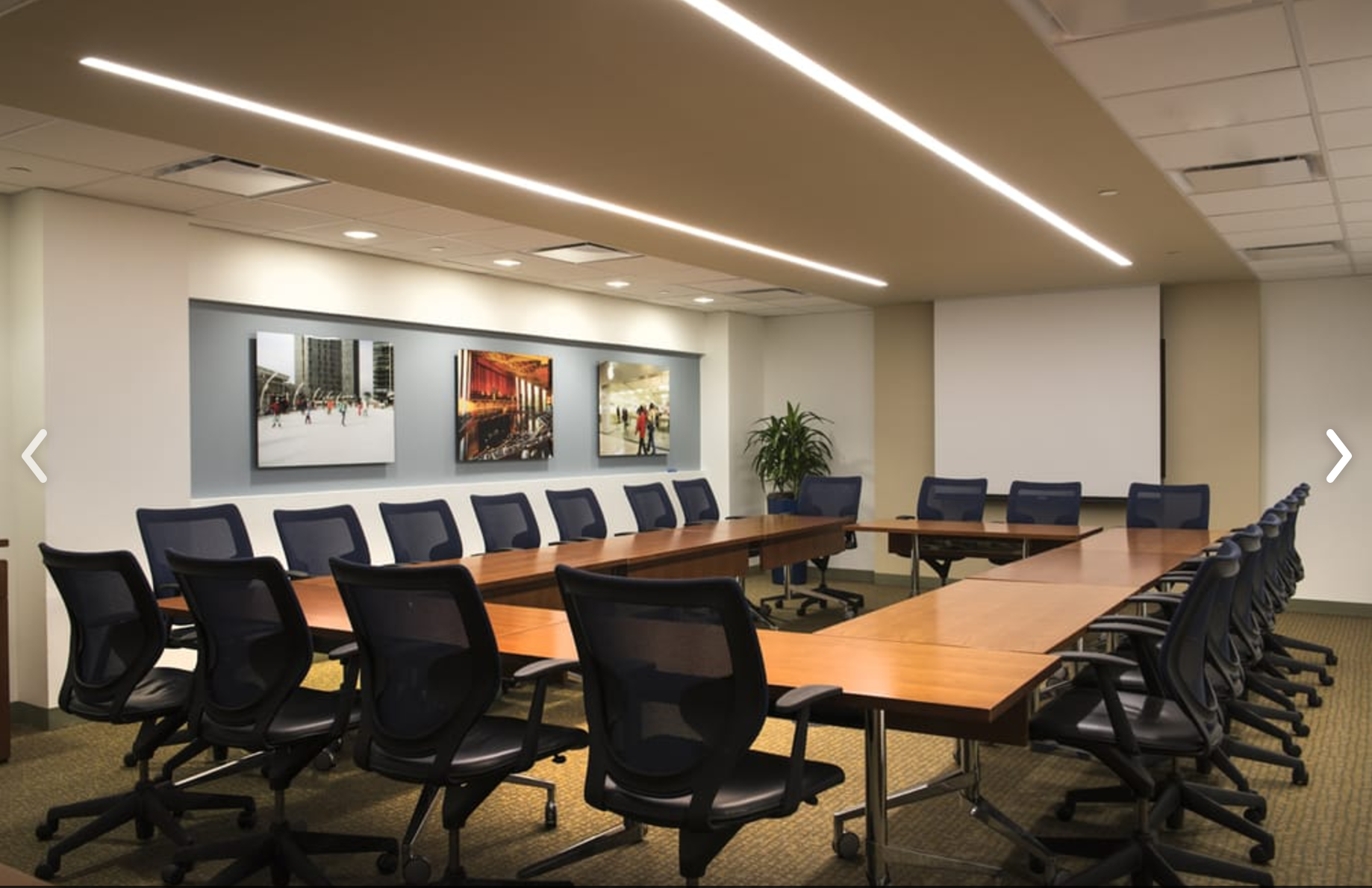 Executive Office Suites - Dominian Room