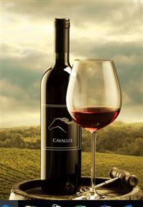 Logo of Cavallo Wine Group International Inc.