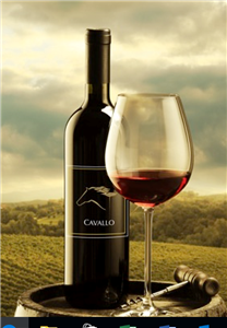 Logo of Cavallo Wine Group International Inc.
