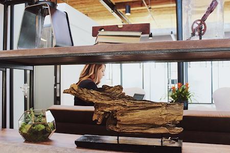 Serendipity Labs Plush Mills - Dedicated Desk