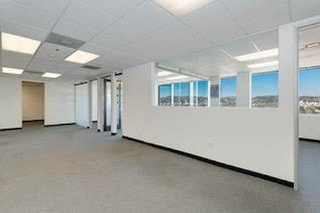 Titan Offices- 5455 Wilshire Blvd - Mini Suite #2127