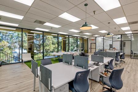 OnePiece Work - Dedicated Desk