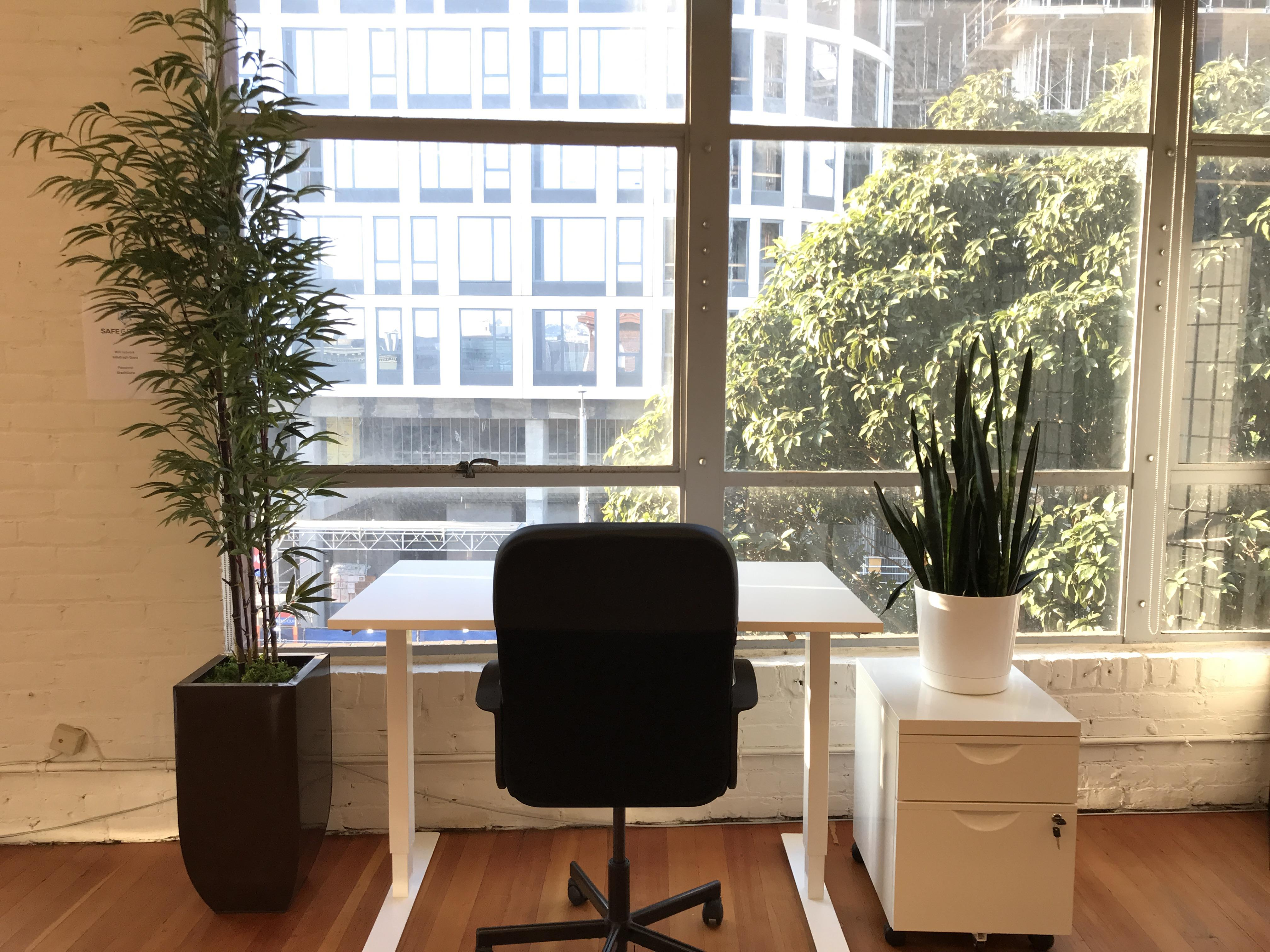 SpaceGraph - Dedicated Desk 1