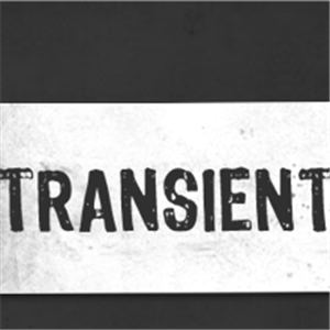 Logo of Transient Pictures