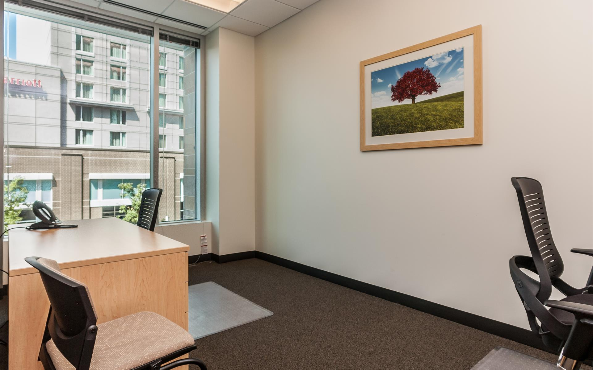 Intelligent Office of Raleigh - Team Office for 2   Double Executive