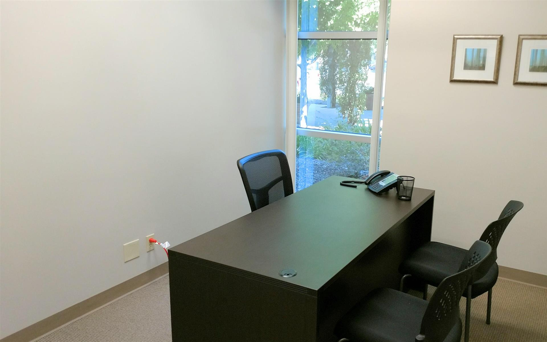 Focus Strategies - Suite 120 - Private Office 1 with view