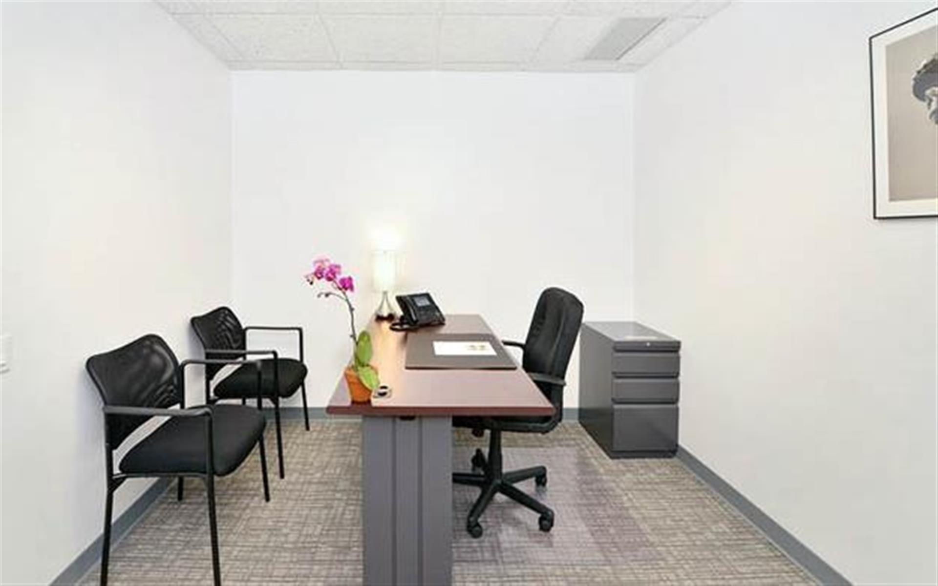 NYC Office Suites 733 - Private & Secure Office (2 Desks)
