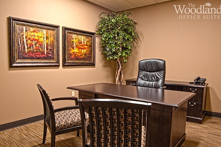 The Woodlands Office Suites - Day Office
