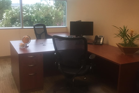 Pleasanton Business Solutions - 5 person Corner window Office