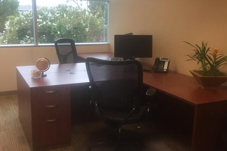 Pleasanton Business Solutions - 5 person Corner window Office