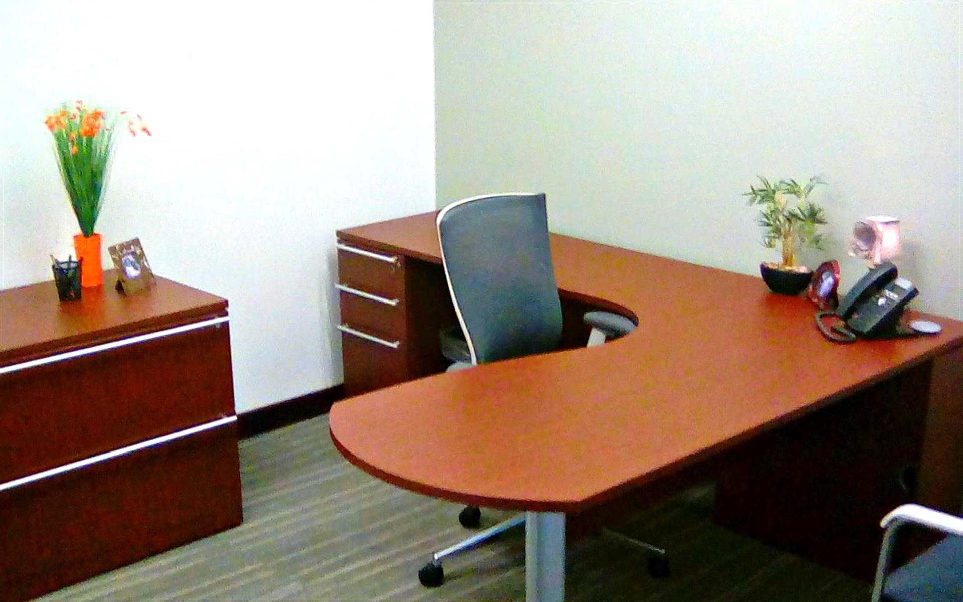 Office Evolution - Centerville - Office #216