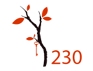 Logo of WorkSpace 230