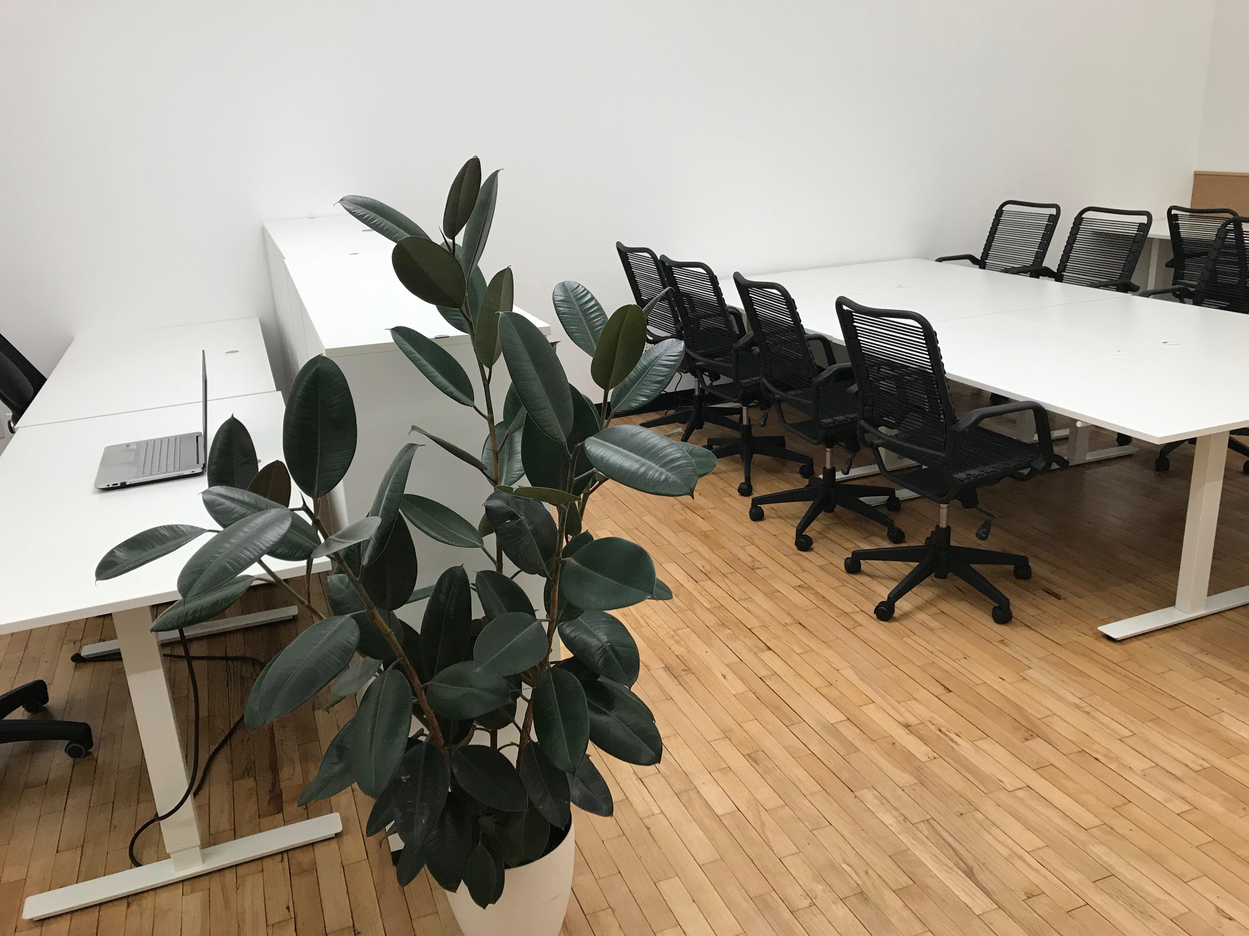 Binyan - Open & Dedicated Desks