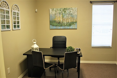 Temple Terrace Business Center - Office 1