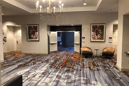 Hilton Garden Inn New Orleans Convention Center - Camellia Room