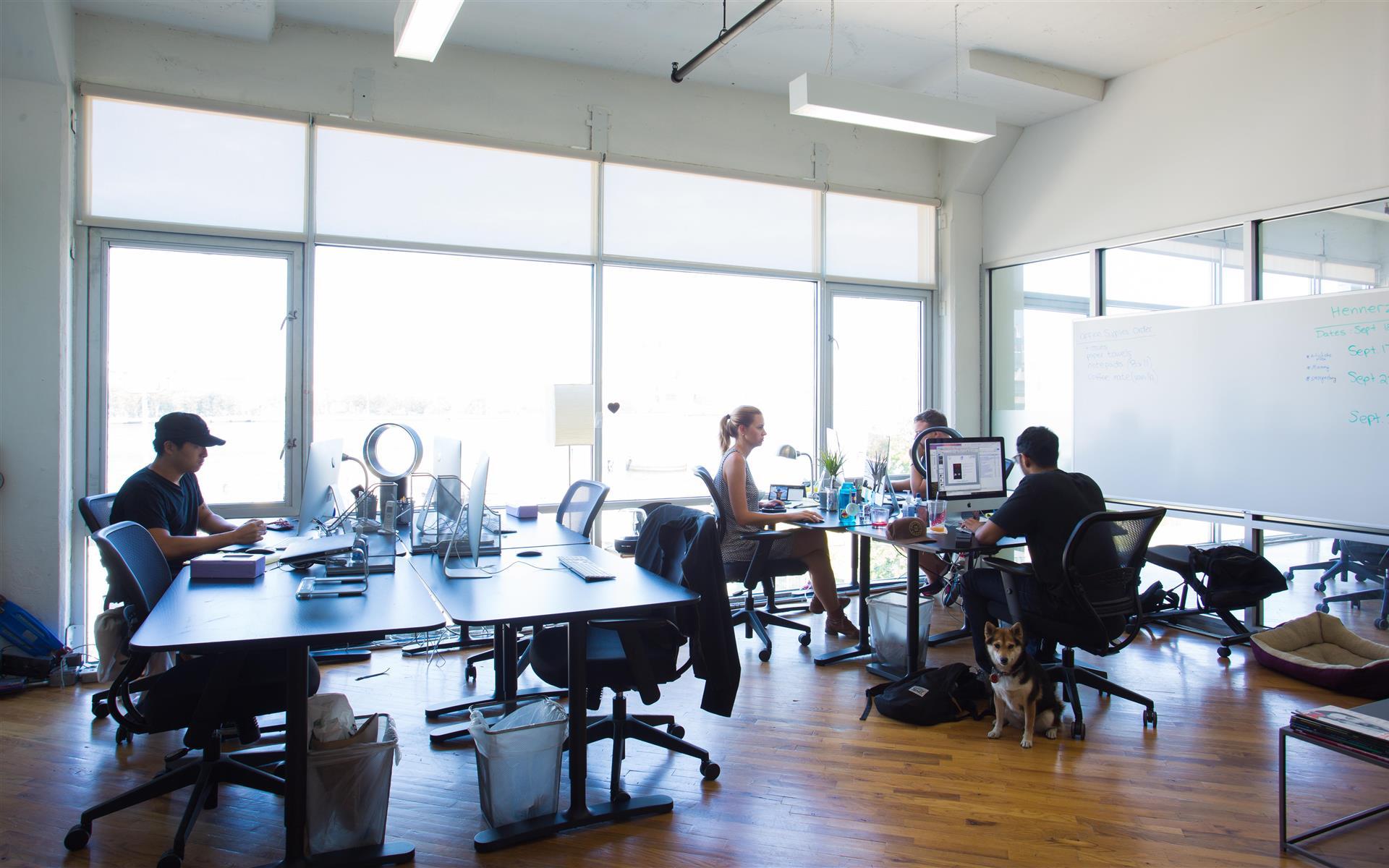 Green Desk - 240 Kent Ave - 11 Desk Office with Natural Lighting