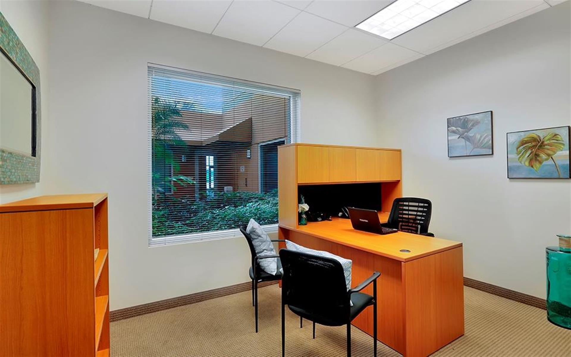 Premier Executive Center - Executive Day Office