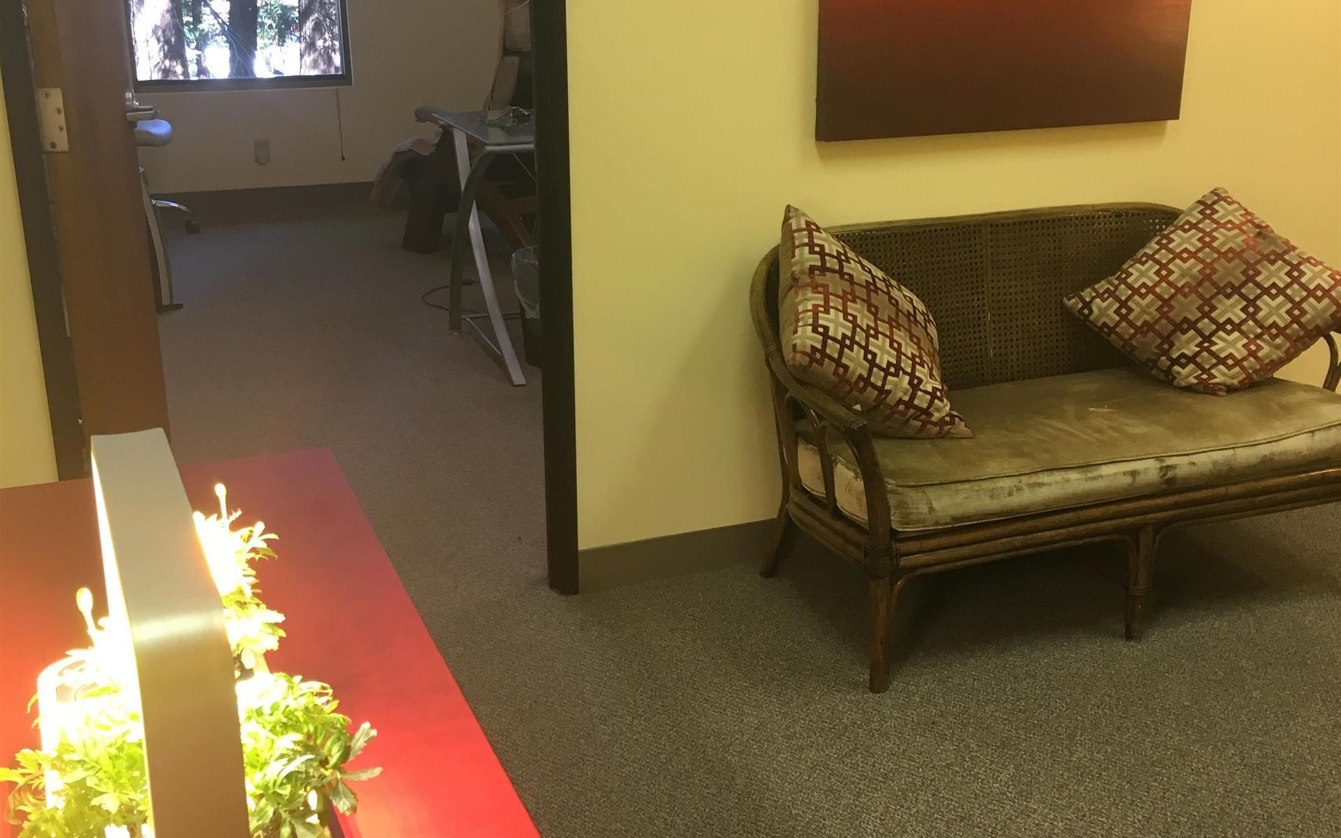 Brain Balancing Intl - Office overlooking Redwood trees