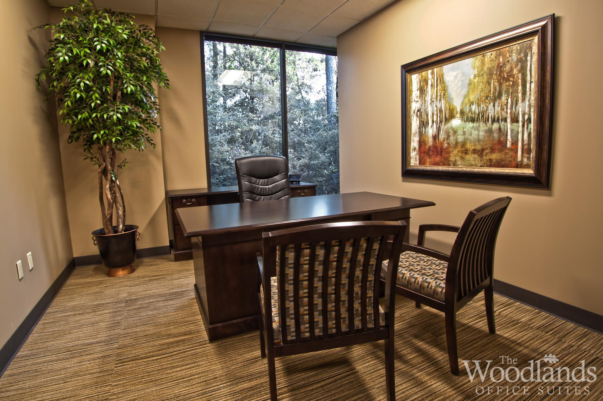 The Woodlands Office Suites - Suite #220 - Large Window Office