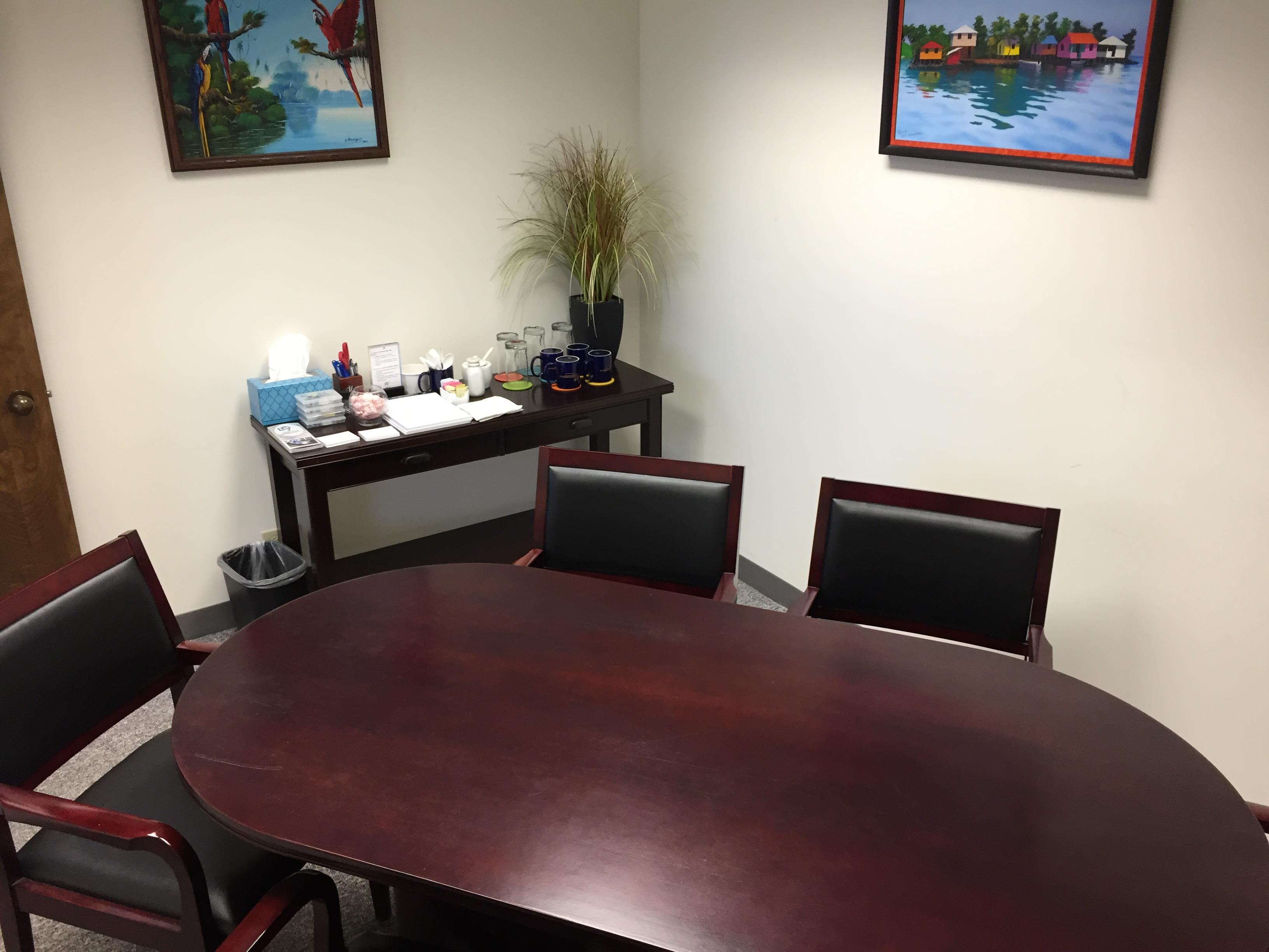 Lake Cook Reporting and Videoconferencing - Racetrack Conference Room