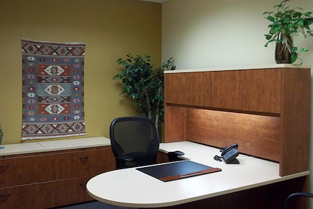 Office Alternatives (Journal Center location) - Day Office 2