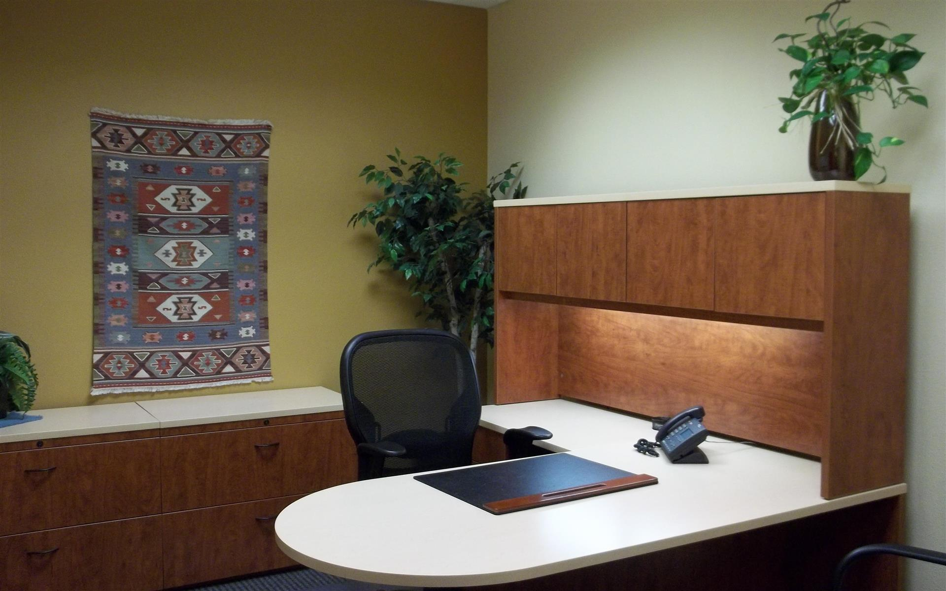 Office Alternatives (Journal Center location) - Day Office 2