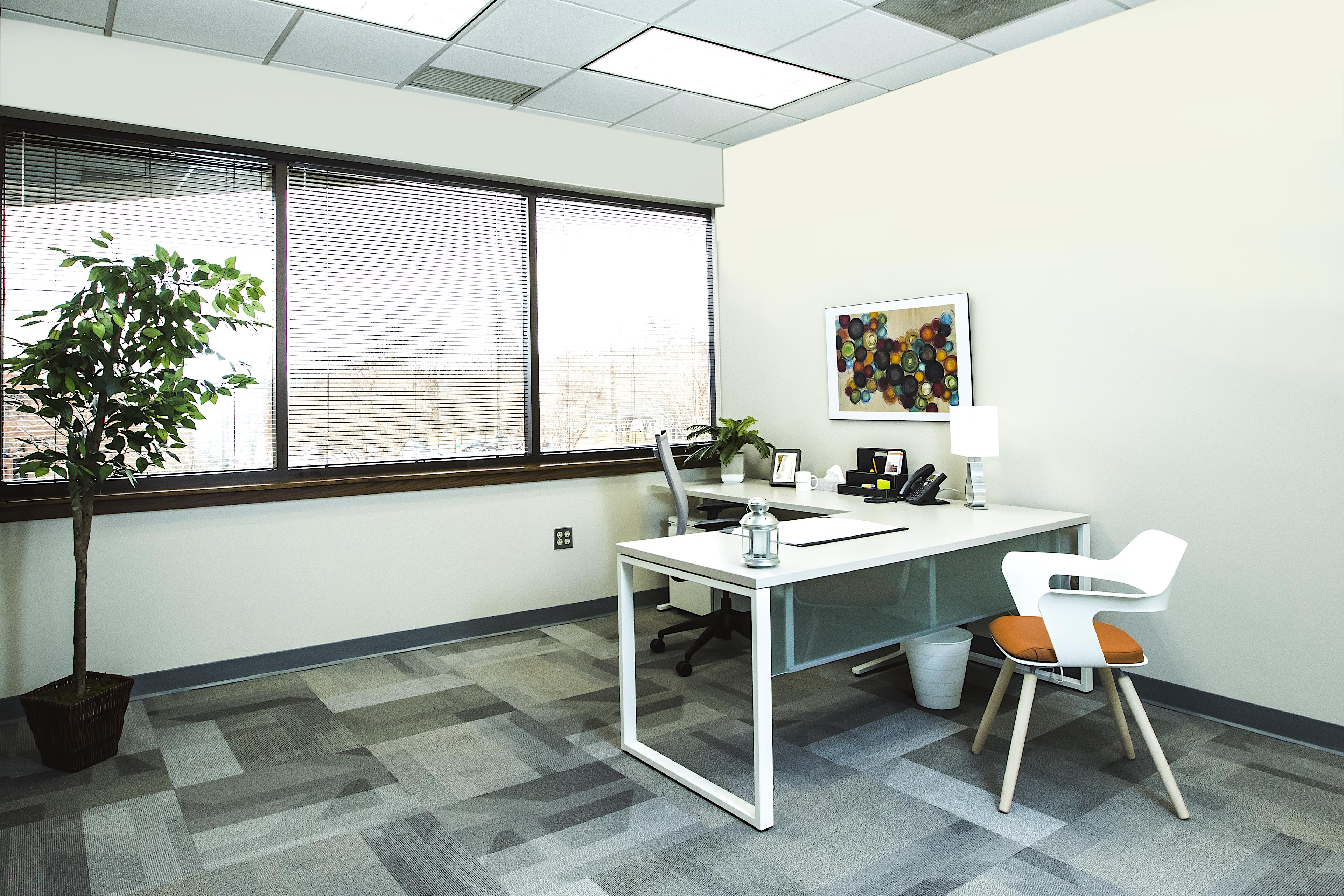 Office Evolution Greensboro - Day Office 2