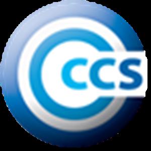 Logo of Customer Centered Strategies