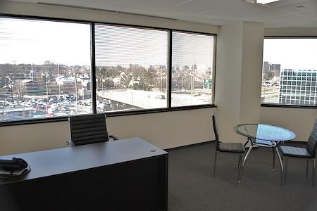 Oxford Executive Suites - E29 - Large Office