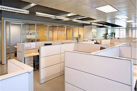 TechSpace- Aliso Viejo - Suite 455
