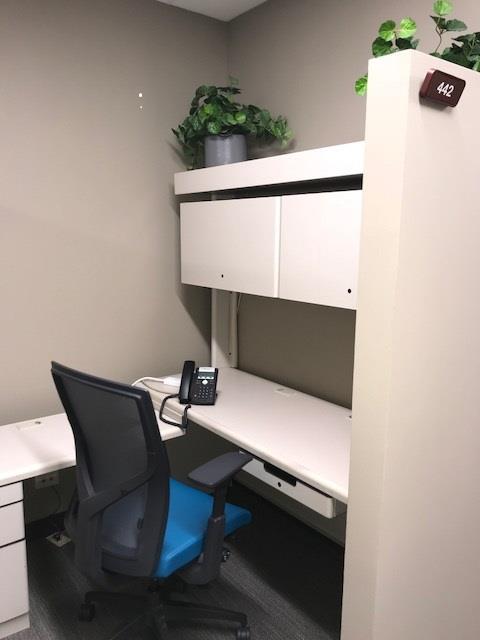 Office Evolution - Hoffman Estates - Dedicated Desk 2-Workstation 442