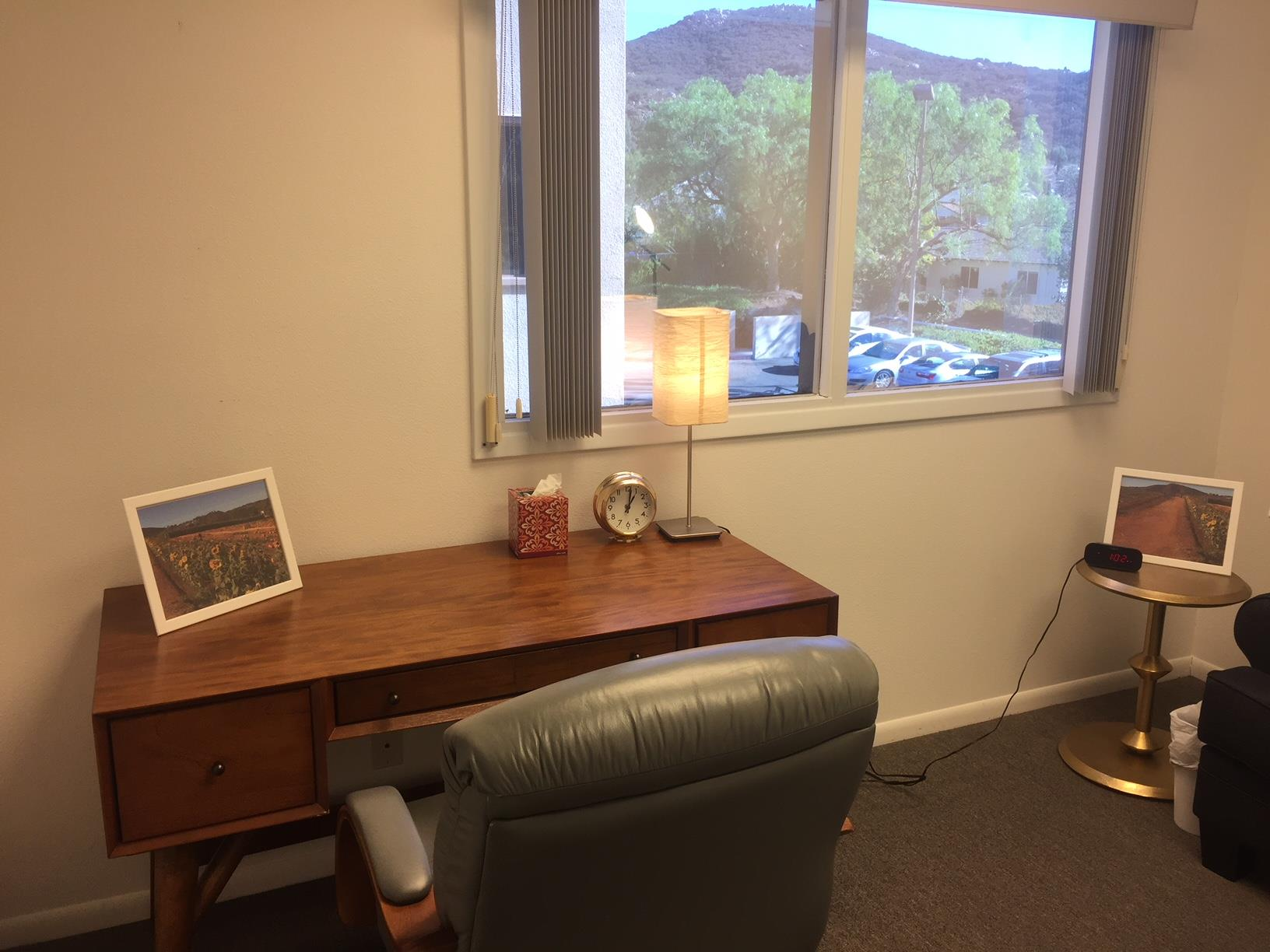 Waves, A Psychological Corporation - Fri, Sa, Sun Furnished Mtn View Office