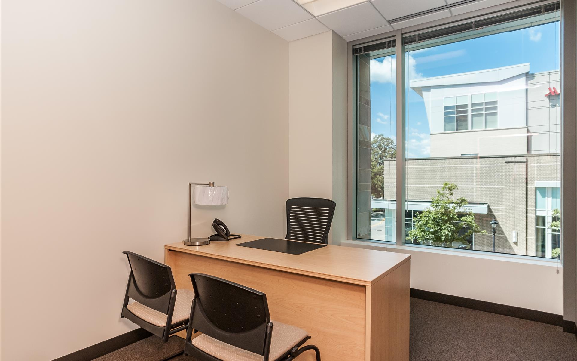 Intelligent Office of Raleigh - Private Office | Executive Office 3