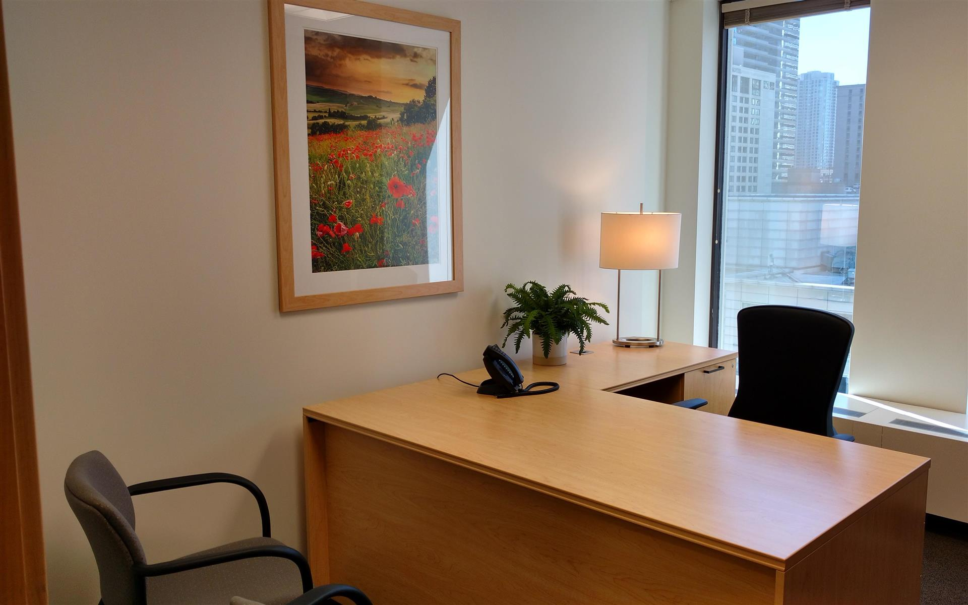 Intelligent Office Chicago Mag Mile - Executive Suite 1011